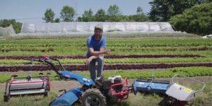 Market Gardening Videos