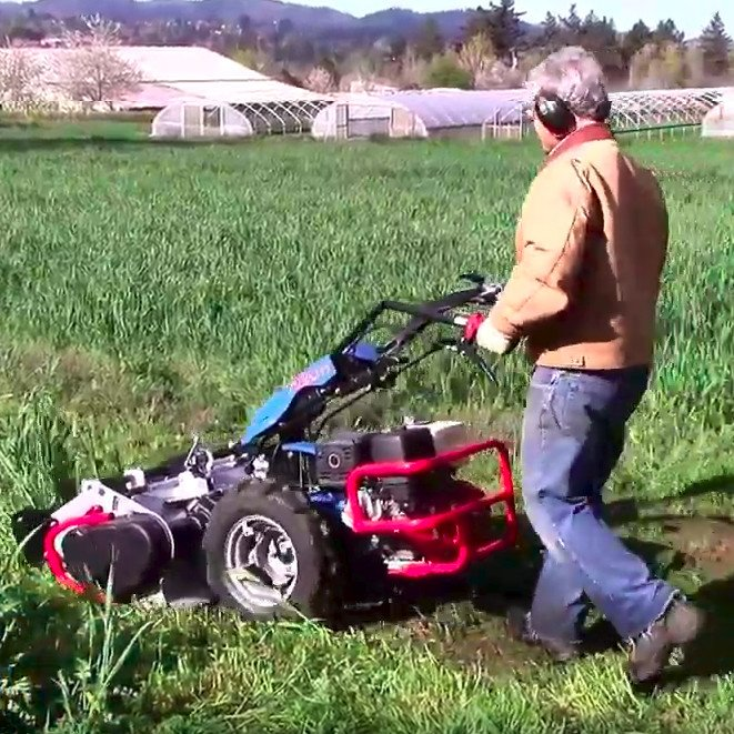 Mowing cover crops with a flail mower (BCS)