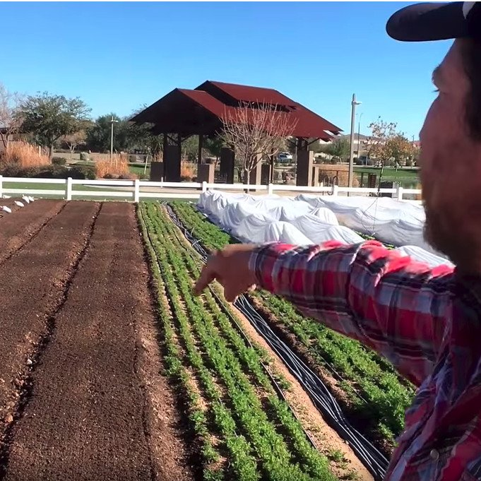 Setting up beds with a rotary plow