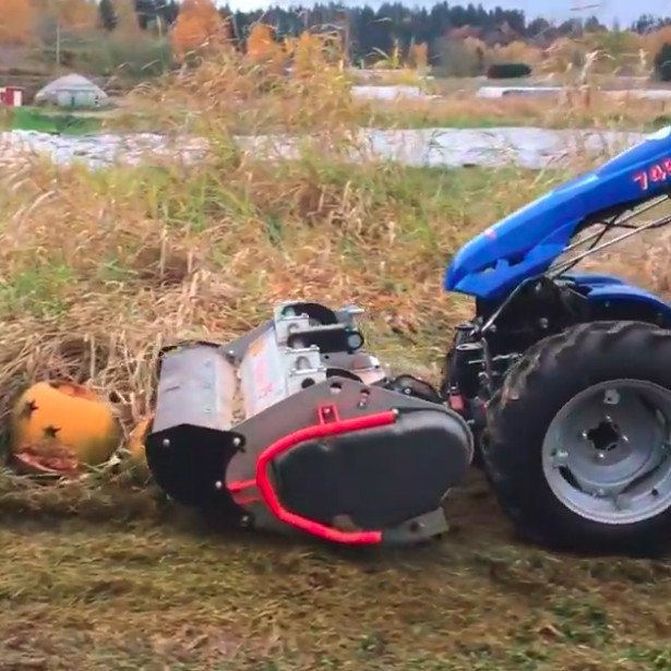 Shredding pumpkins and tall grass with BCS flail mower and model 749