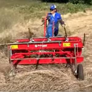 Walk-behind hay rake